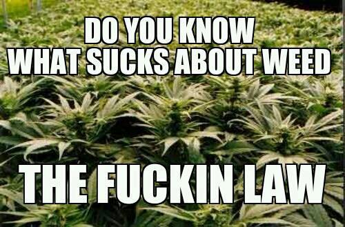 Do you know what sucks about weed? The fucking law