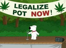 Legalize Pot Now!