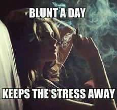 Blunt a day keeps the stress away