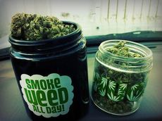 smoke weed all day