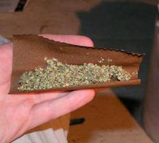 rolling a blunt