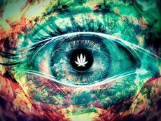 trippy picture