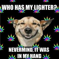 who has my lighter?