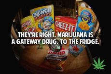 Marijuana is a gateway drug to the fridge