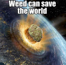 weed can save the world