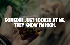 someone just looked at me, they know I'm high