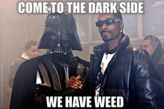 come to the dark side we have weed