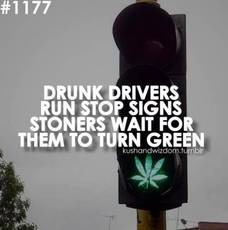 drunk drivers run stop signs. stoners wait for them to turn green